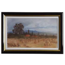Slika- Polje kukuružnjaka