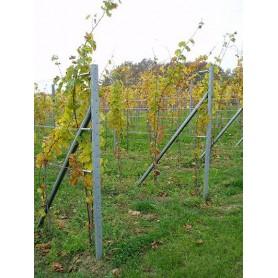 Krajnji stup za vinograd-v2500 mm